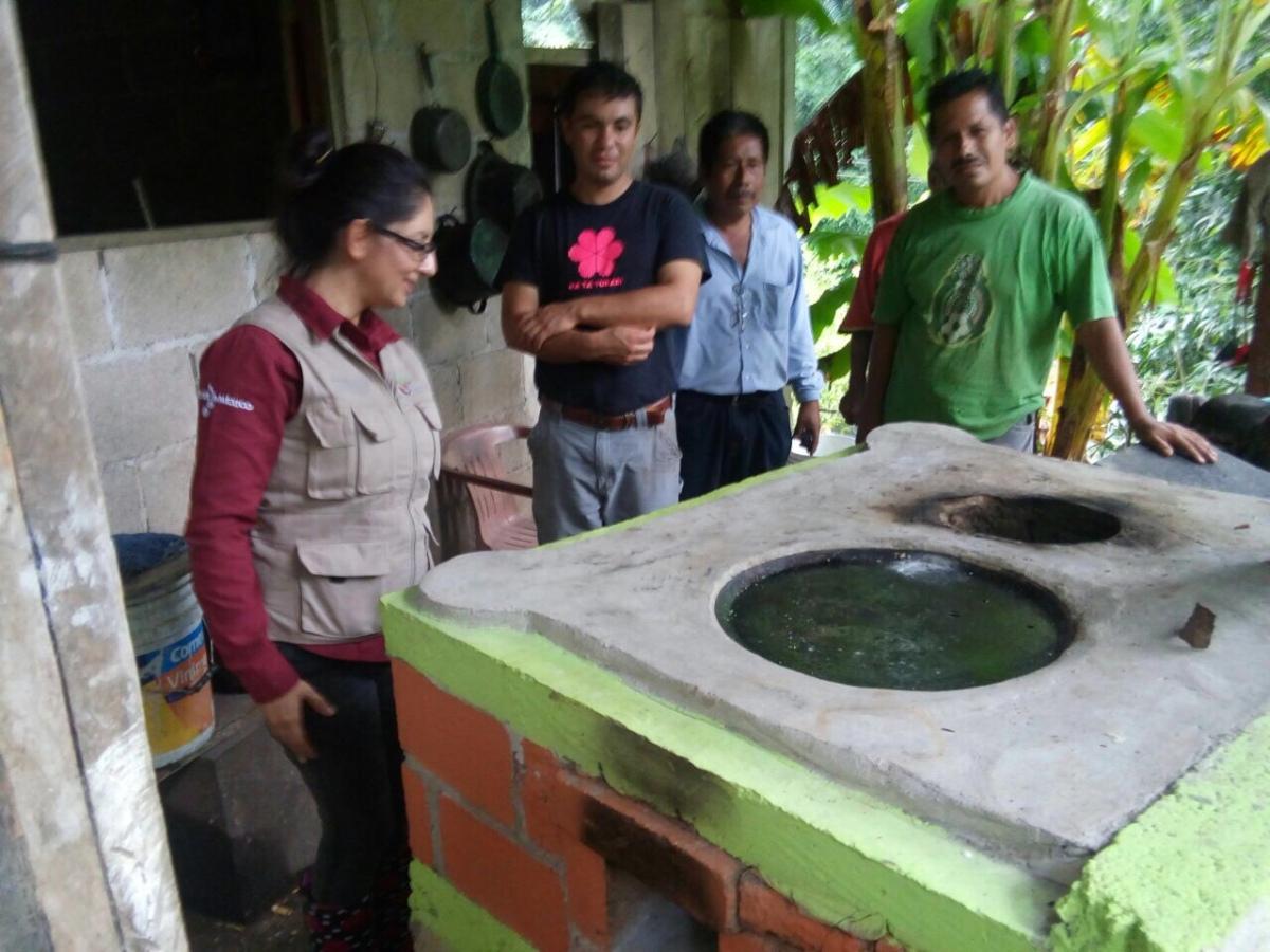 Mejora conafor capacidades y habilidades de silvicultores for Viveros forestales conafor